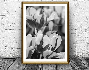 Tulips Print, Tulip Poster, Black and White Photo, Printable Art Poster, Flowers Print, Nature Poster, Floral Poster