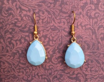 One Pair Of Blue Earrings