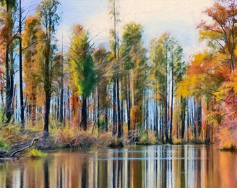 Landscape, Cypress, Fall Colors, Swamp, Okefenokee, Large Wall Art, River View, Reflections, Trees Horizontal Landscape, Available on Canvas