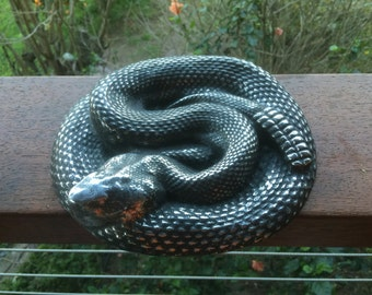 Polished Rattlesnake