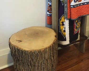 Beautiful Reclaimed White Ash Tree Trunk