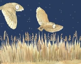 A4 Owl Print