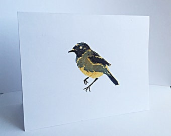 Set of 5 Bird Stationery, Aviary Card Set, Congratulations, Thinking Of You, Just Because Card Set.
