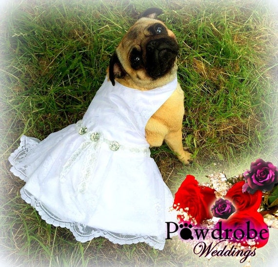 Dog Dress Dog Wedding Dress Dog Wedding