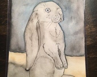 Charlie - Original 5 x 7 Watercolor Painting of the Long Earred Rabbit