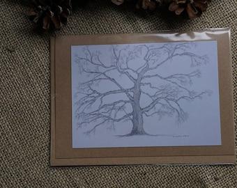 Oak Tree blank gift card