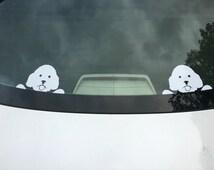 Peeking Bichon Frise vinyl decal window sticker