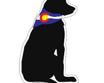 Dog Outa Colorado™