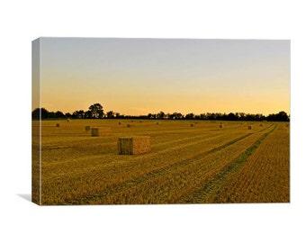 Harvest Dawn Canvas Print