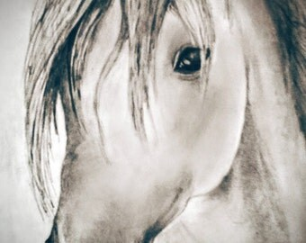 Hand-drawn horse picture