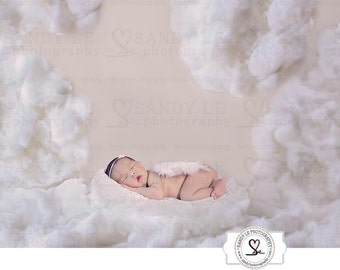 Newborn Digital Backdrop - White and Gray Clouds Background Composite