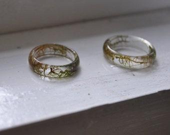 Moss Ring, Plant Ring, Terrarium Ring