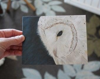 Barn Owl Blank Greeting Card B-002