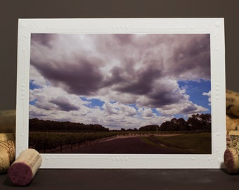 Photography cards, Photography Note Cards, Blank Note Cards, Greeting Cards photography, Vineyard, wine lover, Cloudy Sky, Winery