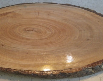 Oak Wood Slice