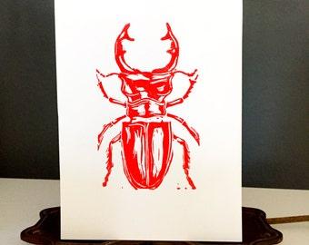 Pincher Beetle
