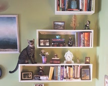 Unique Cat Shelves Related Items Etsy