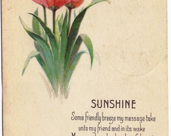 1925 Old Vintage Postcard, Tulips, Flowers, Poem, Poetry, Sunshine