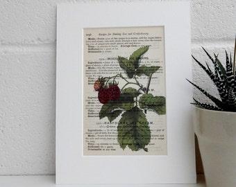 Antique Botanical Image Print - Mrs Beetons Raspberry Print - Kitchen Decor - Cookery Book Art Print - New Home Gift
