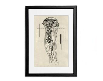 Jellyfish Print illustration A4 Poster Wall Decor Naturalistic Illustration