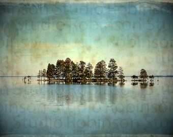 Ocean. Trees. Blue Sky. Water. Original Digital Art Photograph. Giclee Print. Color. Wall Decor. EARTH SKY SEA by Mikel Robinson