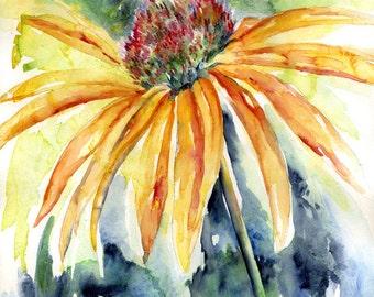 Acrylic Watercolor Coneflower Original Painting, Orange Coneflowers, Coneflower Decor
