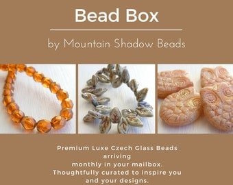 September's Bead Box - Czech Glass Beads - Specialty Beads - Fall Assortment