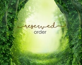Reserved Order for TheVioletFox