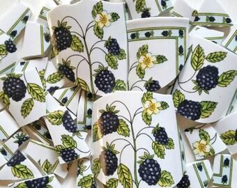 Mosaic Tiles- Berry Plant- 48 pieces