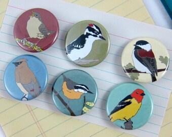 Wild Bird Pins--Woodland Birds--Set of 6