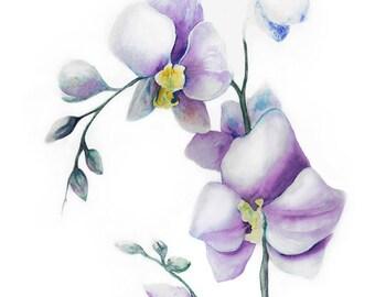Digital art image download printable Orchid  wall art decor
