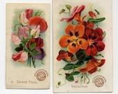Pair Of Arm And Hammer Flower Cards - Sweet Peas - Nasturtium Flowers