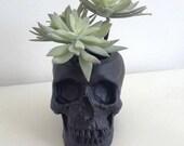 Skull Plant Pot, Skull Planter, Skull Desk Tidy - Black