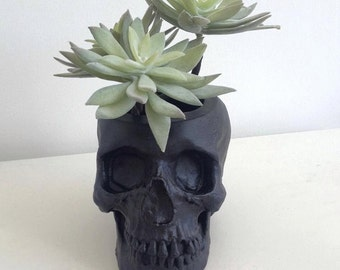Skull Plant Pot, Skull Planter, Skull Desk Tidy - Black