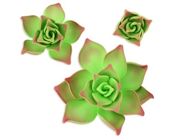 Green Gum Paste Succulents - succulents cake toppers