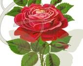 Vintage Flower Red Rose Scrapbooking Illustration Digital Printable Clip Art Paper Crafting