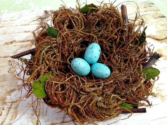 Bird nest birds nest nest woodland decor home decor for The nest home decor