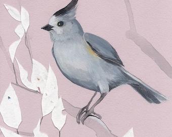 "Black-Crested Titmouse - bird art print, 6"" x 6""."