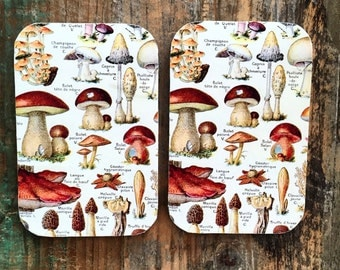 Mushroom tin,large pill box,  jewellery box, gift tin