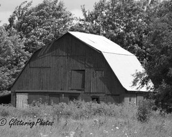Weathered, Barn, Hall, Indiana, Morgan County, Fine Art, Photography, Print, Glossy, 8 x 10, No 3