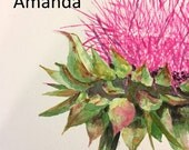 Pink Thistle 8x10 for Amanda only
