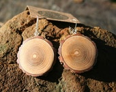 Medium Sized Sassafras wooden Earrings  {obo1}