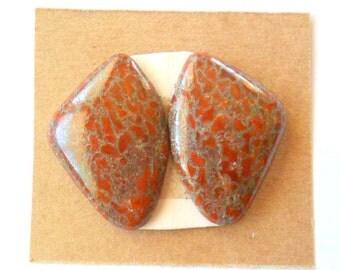 Fossil Dinosaur Matched Pair Cabochons, Utah