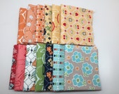 SUMMER Sale - Fat Quarters (13) - mixed collection bundle - by Lori Holt for Riley Blake Designs