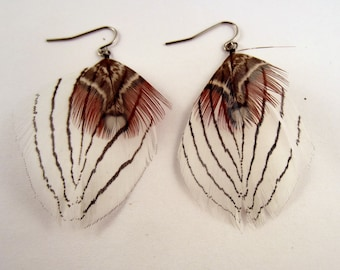 Feather Earrings all natural pheasant