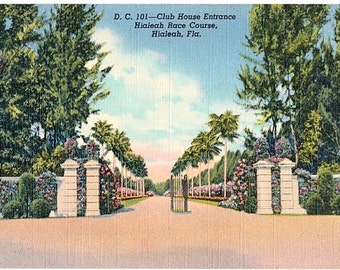 Vintage Florida Postcard - Clubhouse Entrance at Hialeah Park Racetrack (Unused)