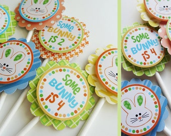 Bunny Birthday Party Cupcake Toppers Decorations Fully Assembled