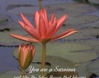 Inspirational flower wall art,survivor gifts,orange lotus photo,flower print,special occasion,positive affirmation collection, WHOLESALE