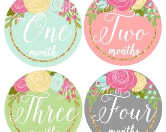 FREE GIFT, Baby Girl Monthly Stickers, Baby Month Stickers,  Roses Floral Stickers, Milestone Stickers, Baby Bodysuit Stickers, Photo Prop