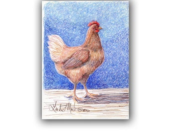 Art Original Hen Artwork Prismacolor Drawing llmartin Stable Barn Farm Yard Chicken Free Shipping